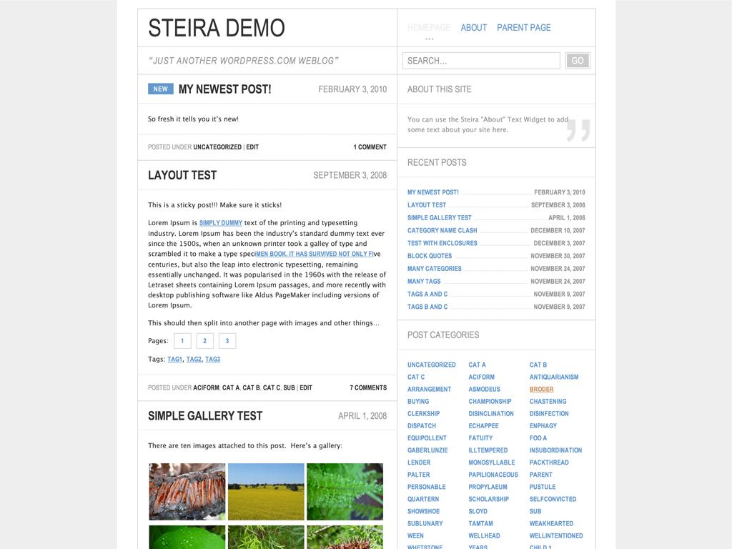 Screenshot of the Steira theme