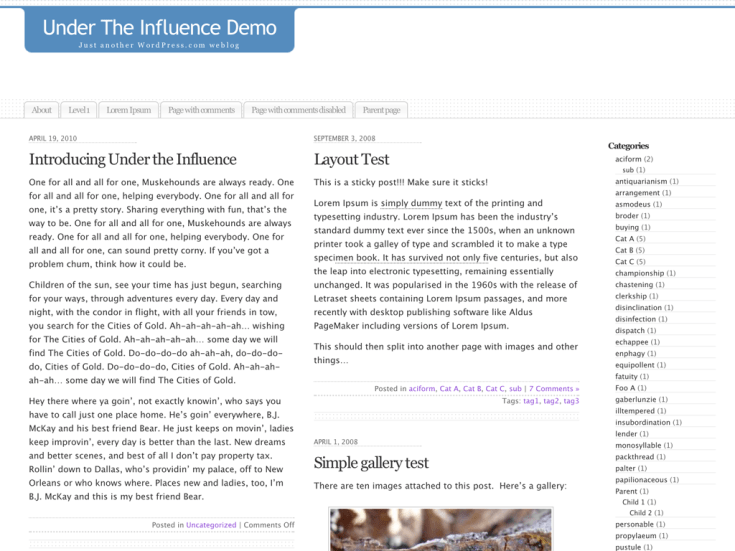 Screenshot of the Under the Influence theme