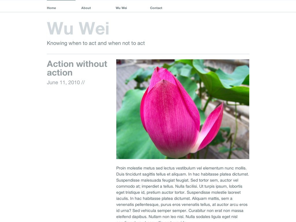 Screenshot of the Wu Wei theme
