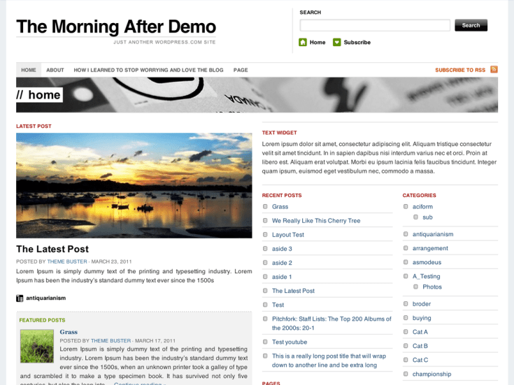 Screenshot of the The Morning After theme
