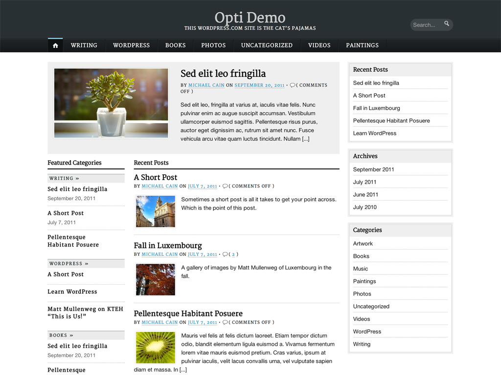 Screenshot of the Opti theme
