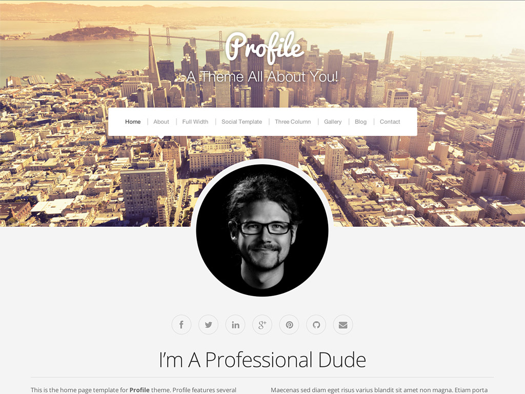 Screenshot of the Profile theme