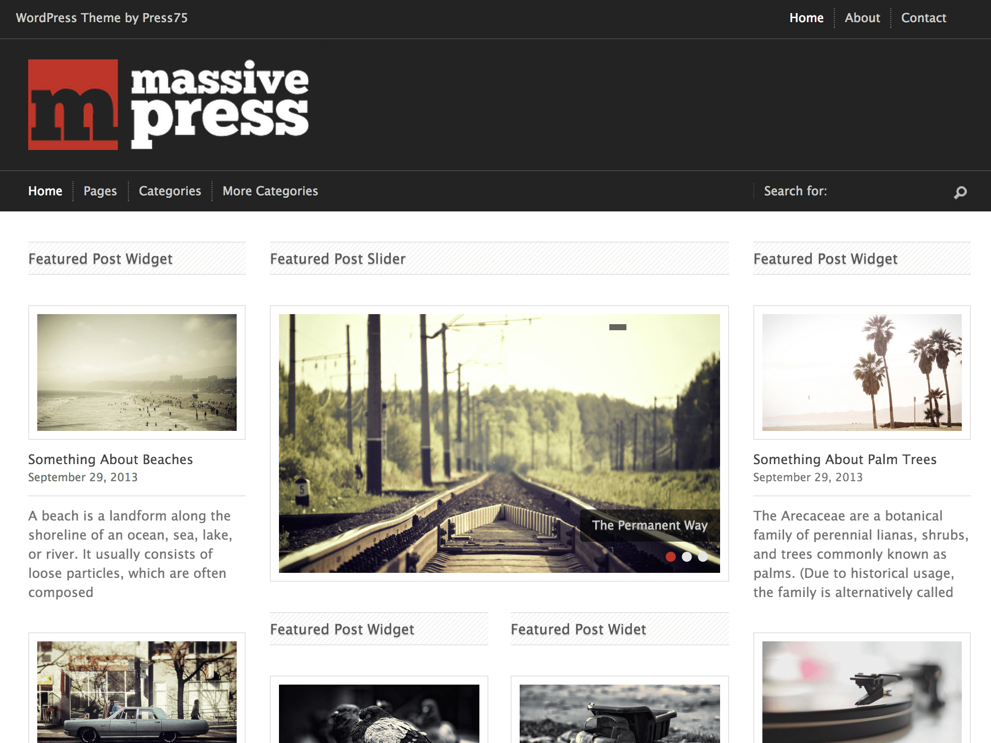 Screenshot of the Massive Press theme
