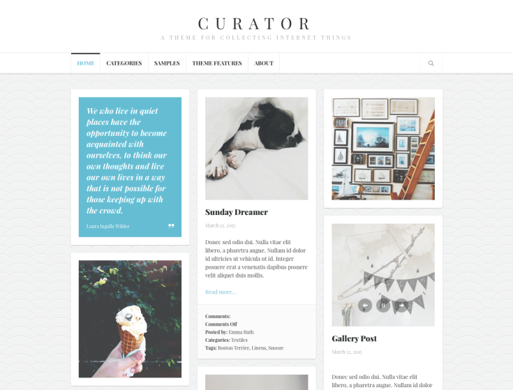 Screenshot of the Curator theme