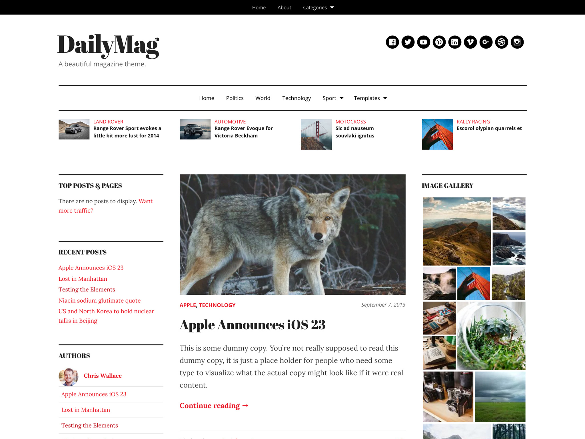 DailyMag WordPress Theme
