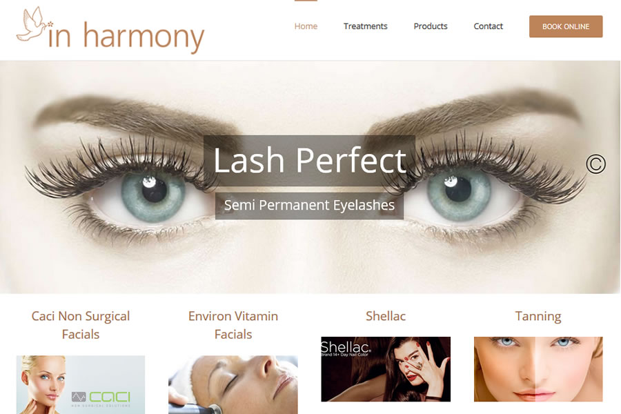 Website design for beauty salons