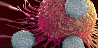 Cancer and Alzheimer