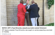 Shivambu apologises for attack on journalist, Sanef worried about 'culture of impunity'