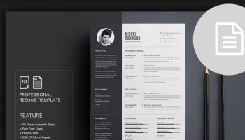 40 best cv resume wordpress themes 2017
