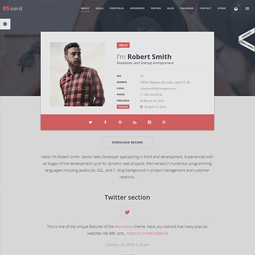 15+ Best WordPress Resume themes for Professional resumes and CVs 3