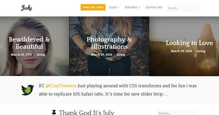 July WordPress Blog Themes 2015