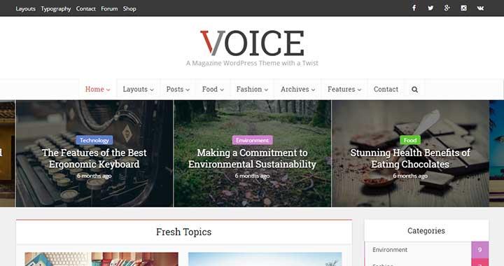 Voice Simple WordPress Themes