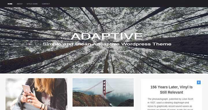 Catch Adaptive