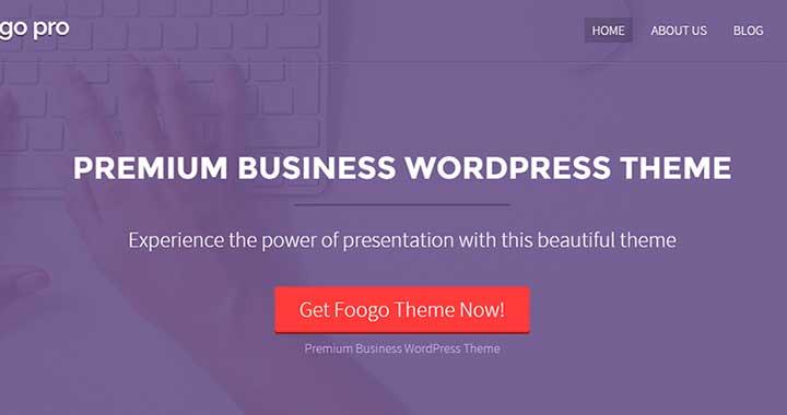 Foogo-PRO popular business theme