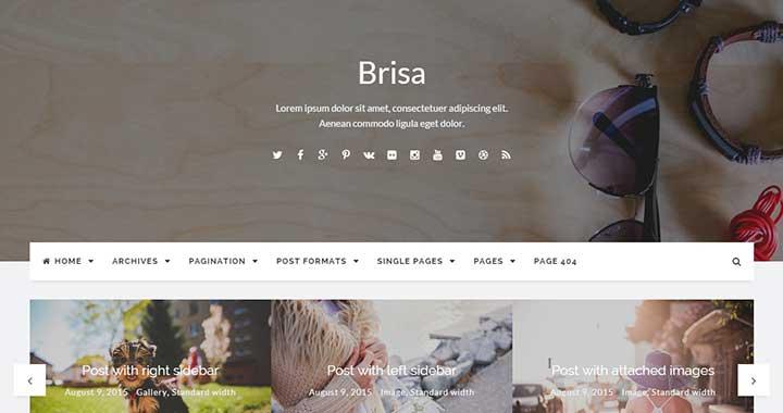 Brisa wp premium themes 2015