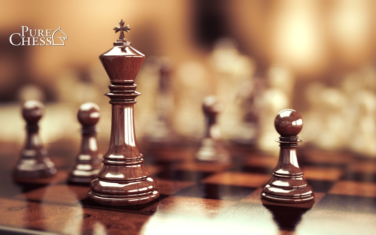 Chess Windows 10 Theme Themepackme