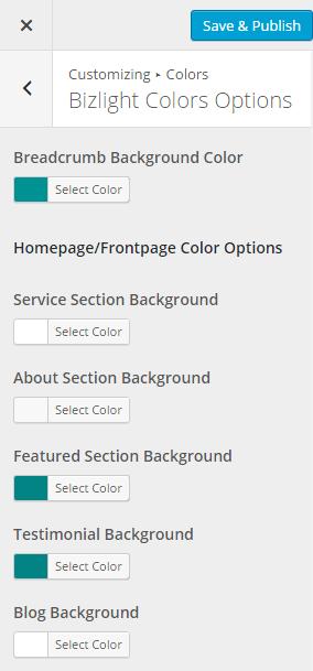 Biz Lite Color Options