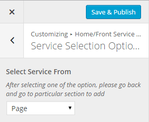 service-selection-option