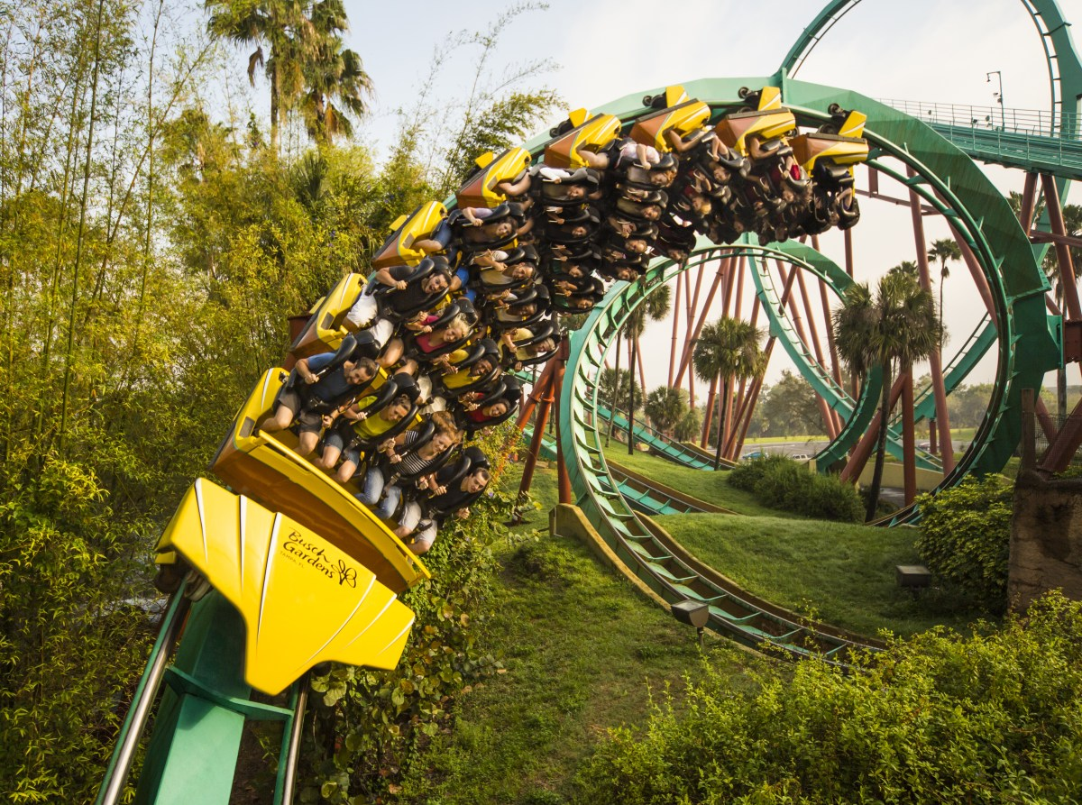 Visit Busch Gardens Tampa Bay and Adventure Island free in 2018 with ...