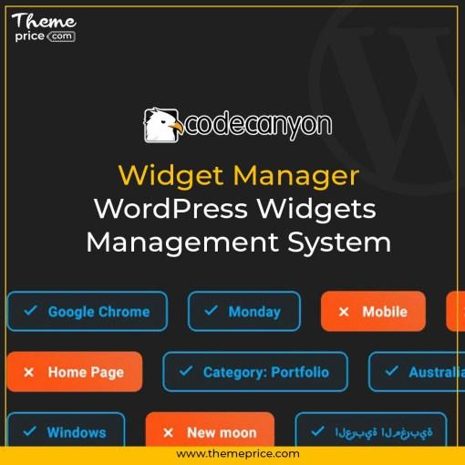 Widget Manager – WordPress Widgets Management System