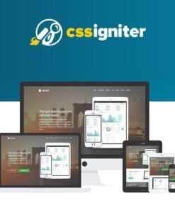 CSS Igniter Struct WordPress Theme