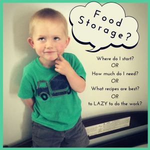 Let's be real. We all know we need to start gathering food storage. And we start with good intentions, but along the way get frustrated and discouraged.