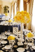 Navy and yellow reception