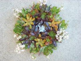 Succulent centrepieces, by SucculentSalon on etsy.com