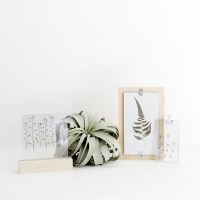 DIY Pressed Flower Display