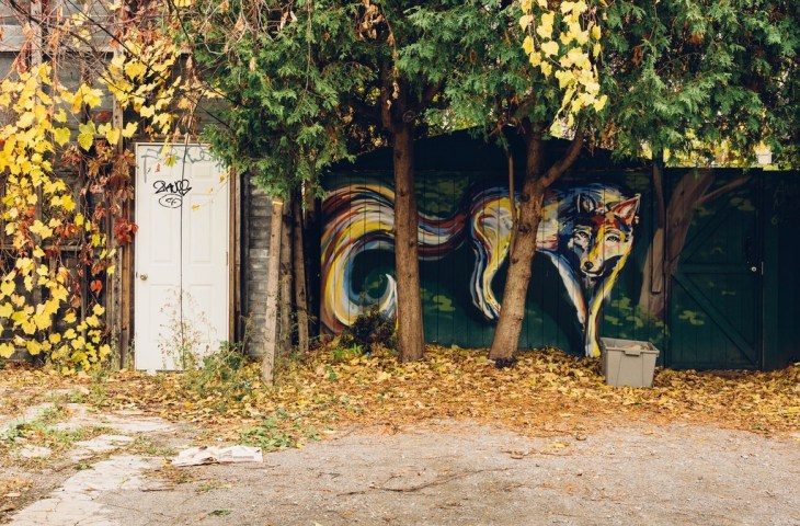 Wolf - Street Art in Toronto, Canada