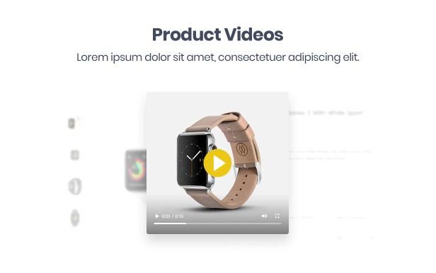 Molla - Multipurpose Responsive Shopify Theme - 11