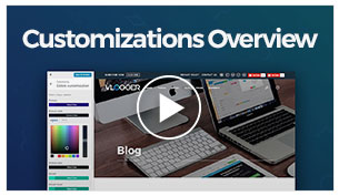 Vlogger - Customizations Overview