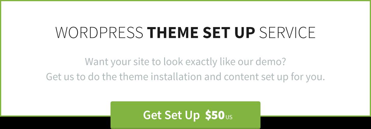 WordPress Theme Instalation by Theme Canon