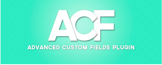 Advanced Custom Fields Development – CSS, PHP, HTML & JavaScript