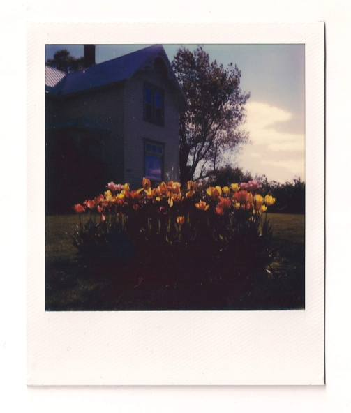 polaroid-a farmhouse 2