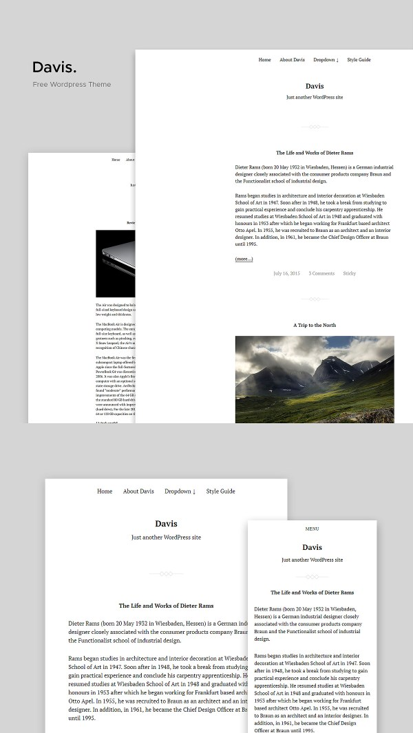 Davis: Free Lightweight Developer-oriented Free WordPress Theme