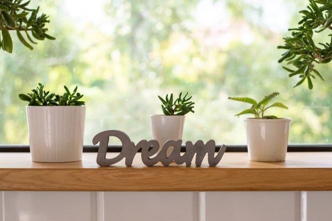 dream planter