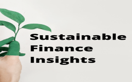 Sustainable Finance Insights