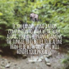 Buddha quote 2 pinterest