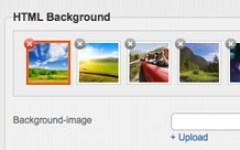 The background images you uploaded are stored in the library with preview. title=Image Preview