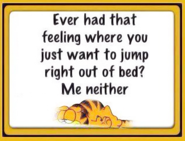 fibromyalgia meme: ever had that feeling where you just want to jump right out of bed? me neither.
