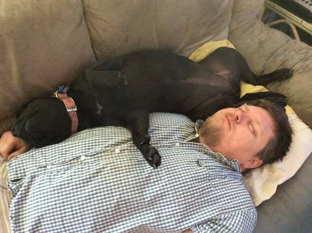 man lying on couch next to dog