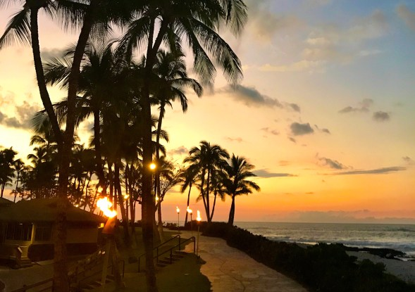 You can transfer Amex points to Etihad and then use the Etihad miles to book flights to Hawaii on American Airlines flights!