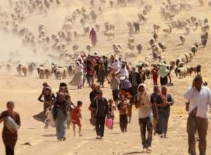 Yazidíes huyen de ataque genocida de Estado Islámico en Sinjar, provincia del norte de Iraq, agosto de 2014. Cientos murieron, unos 400 mil lograron escapar a la aledaña región autónoma del Kurdistán. Desde la derrota de ISIS la gran mayoría de los yazidíes que huyeron aún están dispersos, muchos en campamentos en condiciones deplorables. Ni el gobierno iraquí ni el de Kurdistán tratan de resolver la crisis.