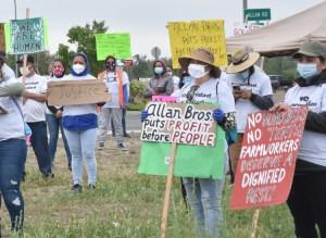 Huelguistas en planta procesadora de frutas Allan Brothers en Naches, Washington, 19 de mayo. Exigen alzas salariales, seguridad y salud laboral, agua limpia y semana de 40 horas.