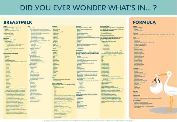 whats-in-breastmilk-poster-canada