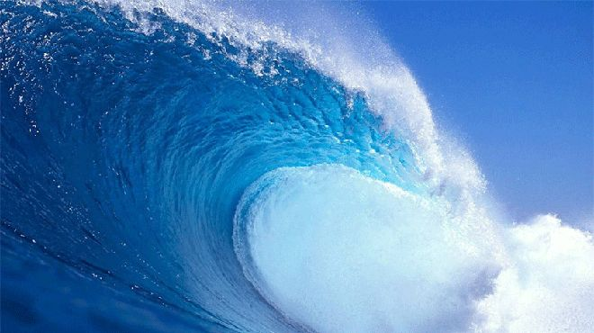 Millennial Democrats and #TheBlueWave