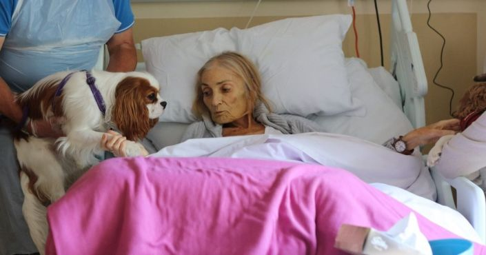 Heartbreaking Photos: Woman Gets Dying Wish to See Pets One Last Time