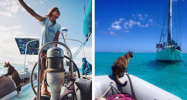 This Woman Quit Her Job; Rescued A Cat; And They're Both Living The Dream!