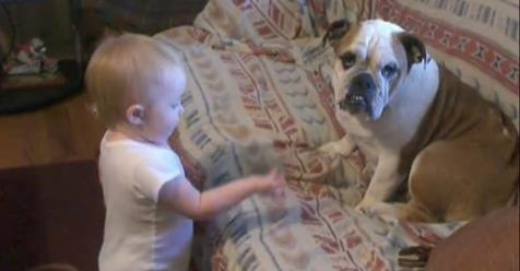 Listen To This Baby's Hilarious Conversation With Her Bulldog